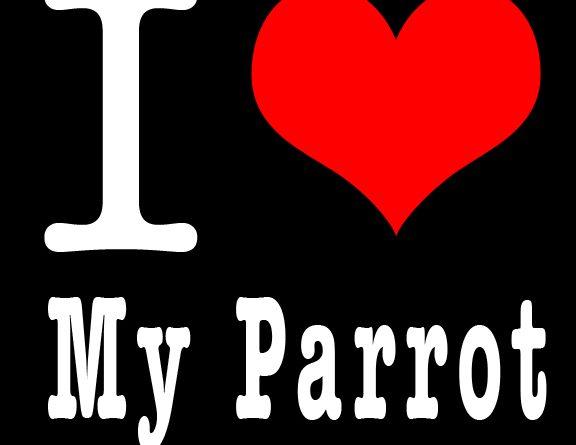 """The """"Parrot Poutique"""""""